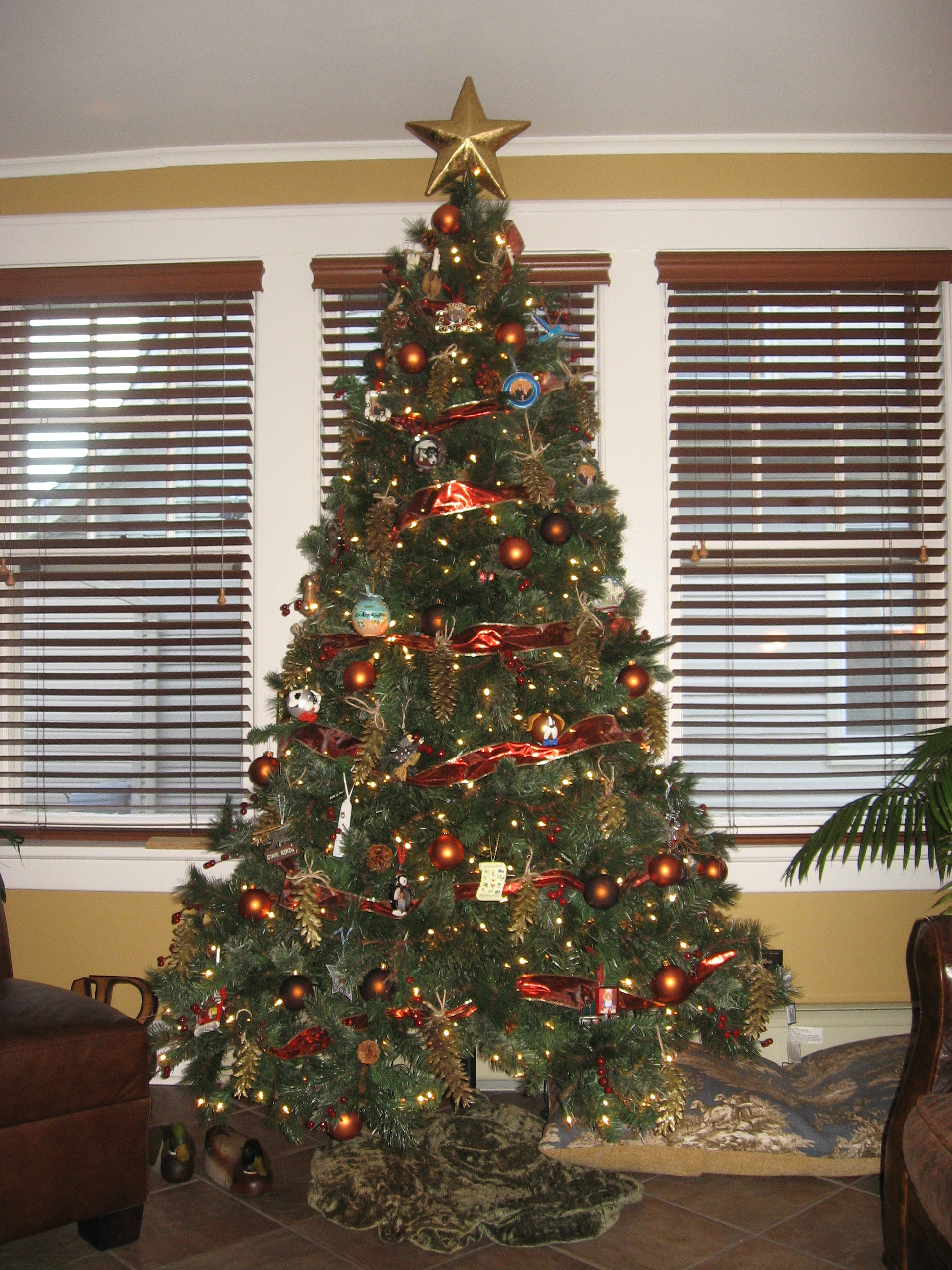 Where To Put The Christmas Tree our crafty home | our christmas trees