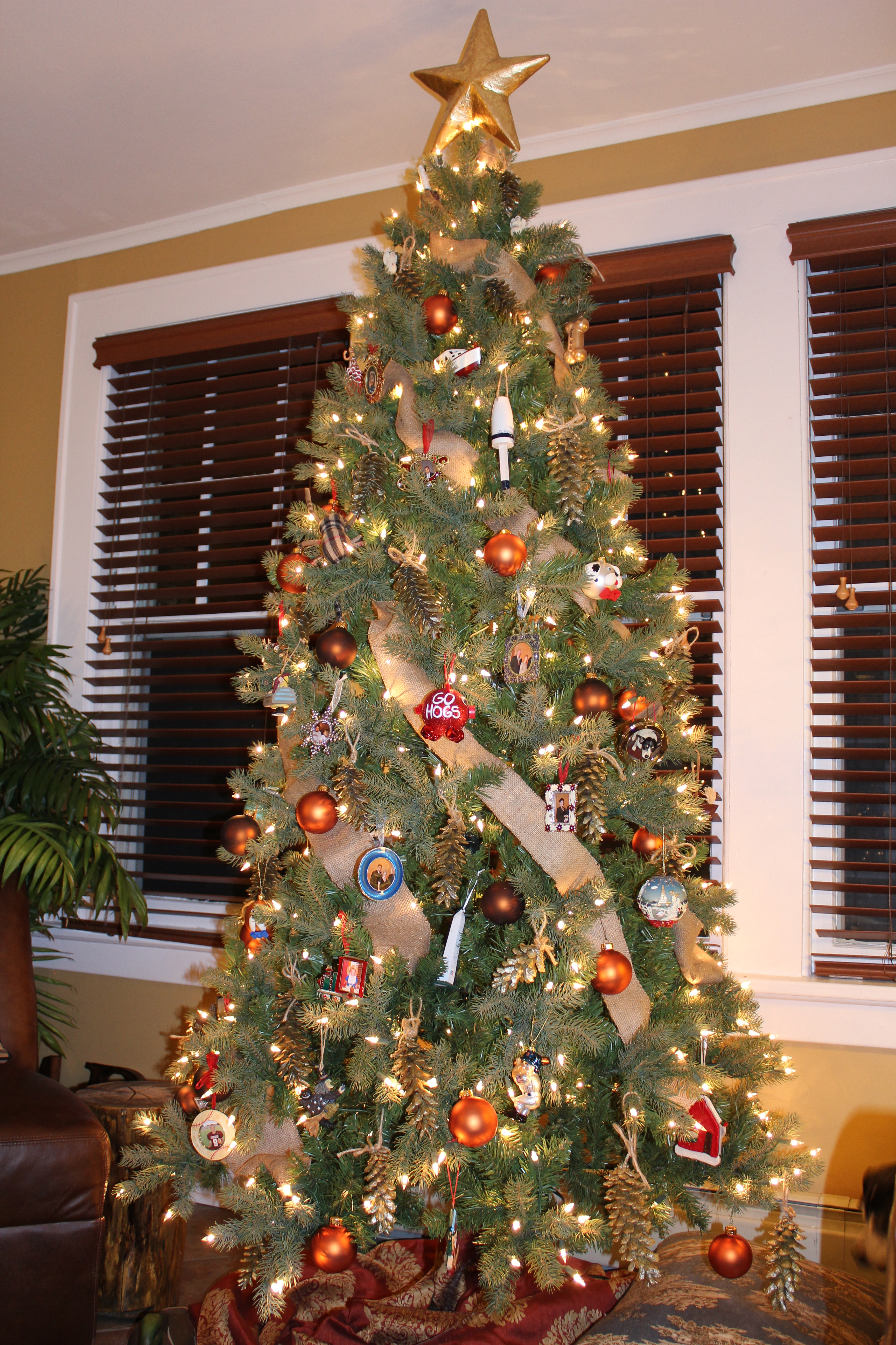 Christmas Tree Pictures In Homes : Our crafty home the christmas trees